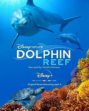 مشاهدة فيلم Dolphin Reef 2020 مترجم أونلاين مترجم