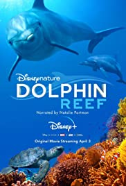 Dolphin Reef (2020) 1080p