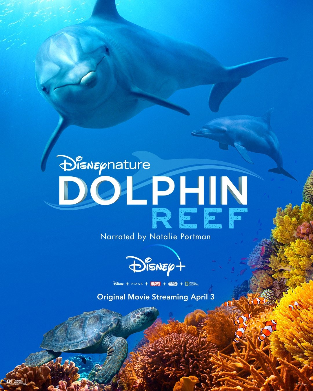 Dolphin Reef-<img src=