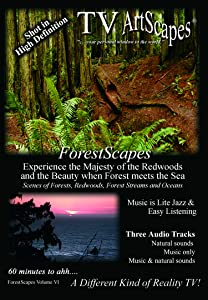 Latest english movie trailers download TV ArtScapes: ForestScapes Volume VI by none [iPad]