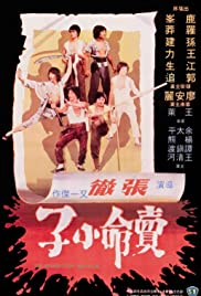 The Magnificent Ruffians(1979) Poster - Movie Forum, Cast, Reviews