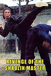 Primary photo for Revenge of the Shaolin Master
