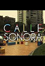 Calle Sonora