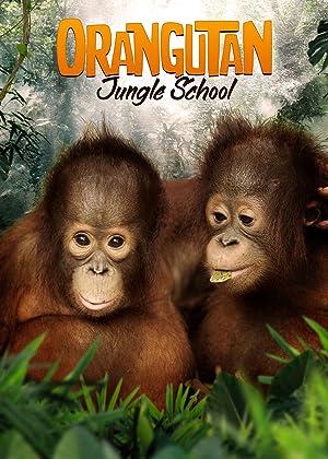 Where to stream Orangutan Jungle School