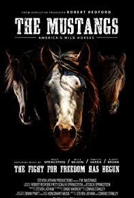 Primary photo for The Mustangs: America's Wild Horses