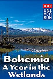 Bohemia: A Year in the Wetlands