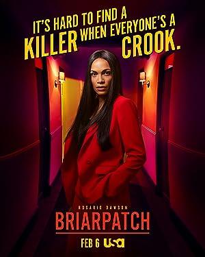 دانلود زیرنویس فارسی سریال Briarpatch 2019 فصل 1 قسمت 1 هماهنگ با نسخه WEBRip وب ریپ