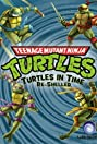 Teenage Mutant Ninja Turtles: Turtles in Time Re-Shelled (2009) Poster