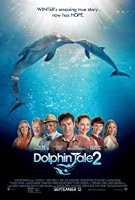 Primary photo for Dolphin Tale 2