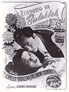 MP4 movie trailer download Itanong mo sa bulaklak Philippines [XviD]
