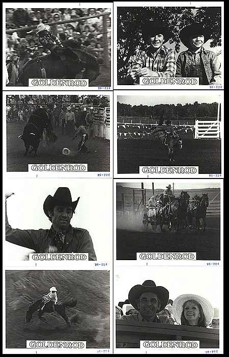 Goldenrod (1976)