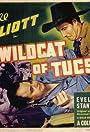 The Wildcat of Tucson