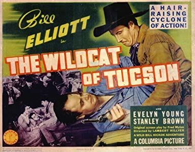 The Wildcat of Tucson