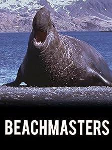 Beachmasters (1993)