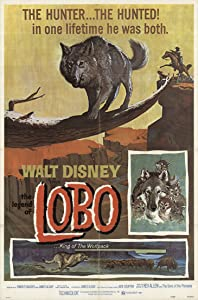 Bittorrent movies search free download The Legend of Lobo USA [480p]