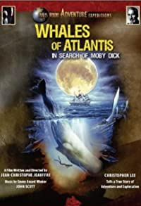 Primary photo for Whales of Atlantis: In Search of Moby Dick