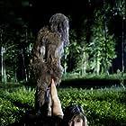 Sarah Jenazian in Boggy Creek (2010)