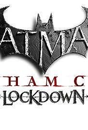Batman: Arkham City Lockdown Poster