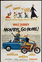 Primary image for Monkeys, Go Home!