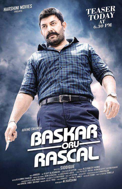 Mawali Raaj (Bhaskar Oru Rascal) 2019 Hindi Dubbed 720p HDRip 900MB