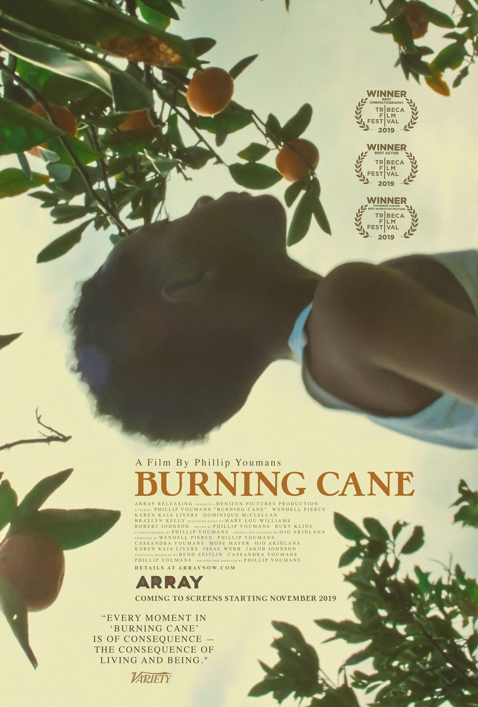 DEGANČIOS CUKRANENDRĖS (2019) / Burning Cane
