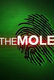 The Mole Poster - TV Show Forum, Cast, Reviews