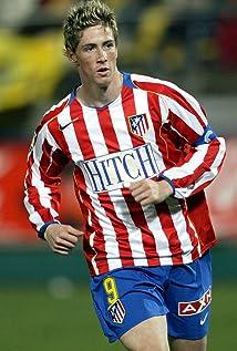 Fernando Torres Picture