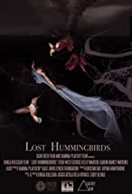 Primary image for Lost Hummingbirds