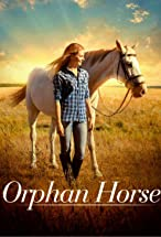 Primary image for Orphan Horse