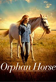 Primary photo for Orphan Horse