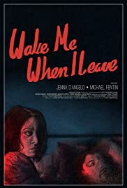 Wake Me When I Leave Poster