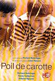 Poil de carotte (2003)