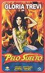 Pelo suelto (1991) Poster