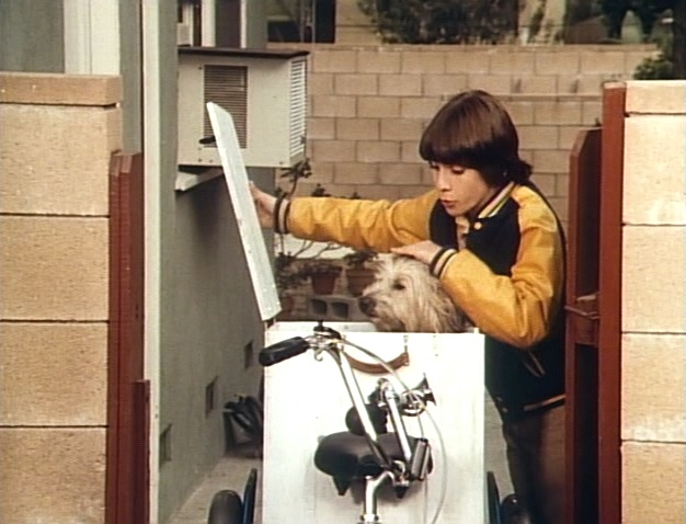 John Femia and Johnny the Dog in Here's Boomer (1980)