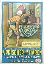 A Prisoner in the Harem