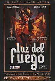 Luz del Fuego (1982)