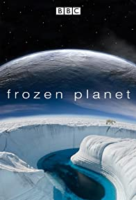 Primary photo for Frozen Planet