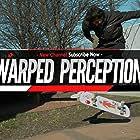 Warped Perception (2016)