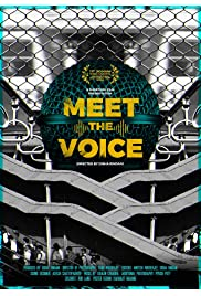 Meet the Voice