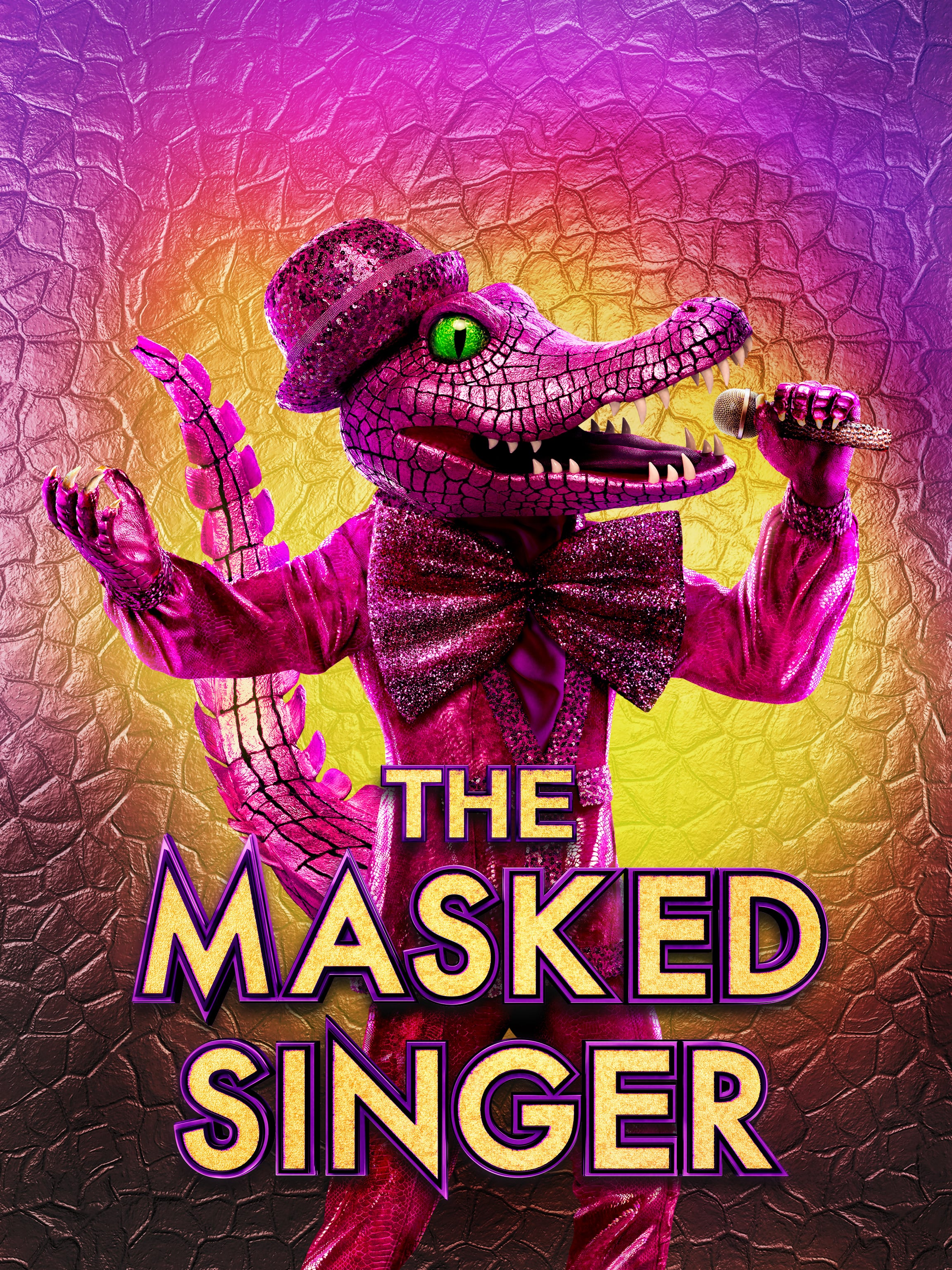 The Masked Singer TV Series IMDb