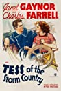 Tess of the Storm Country (1932) Poster