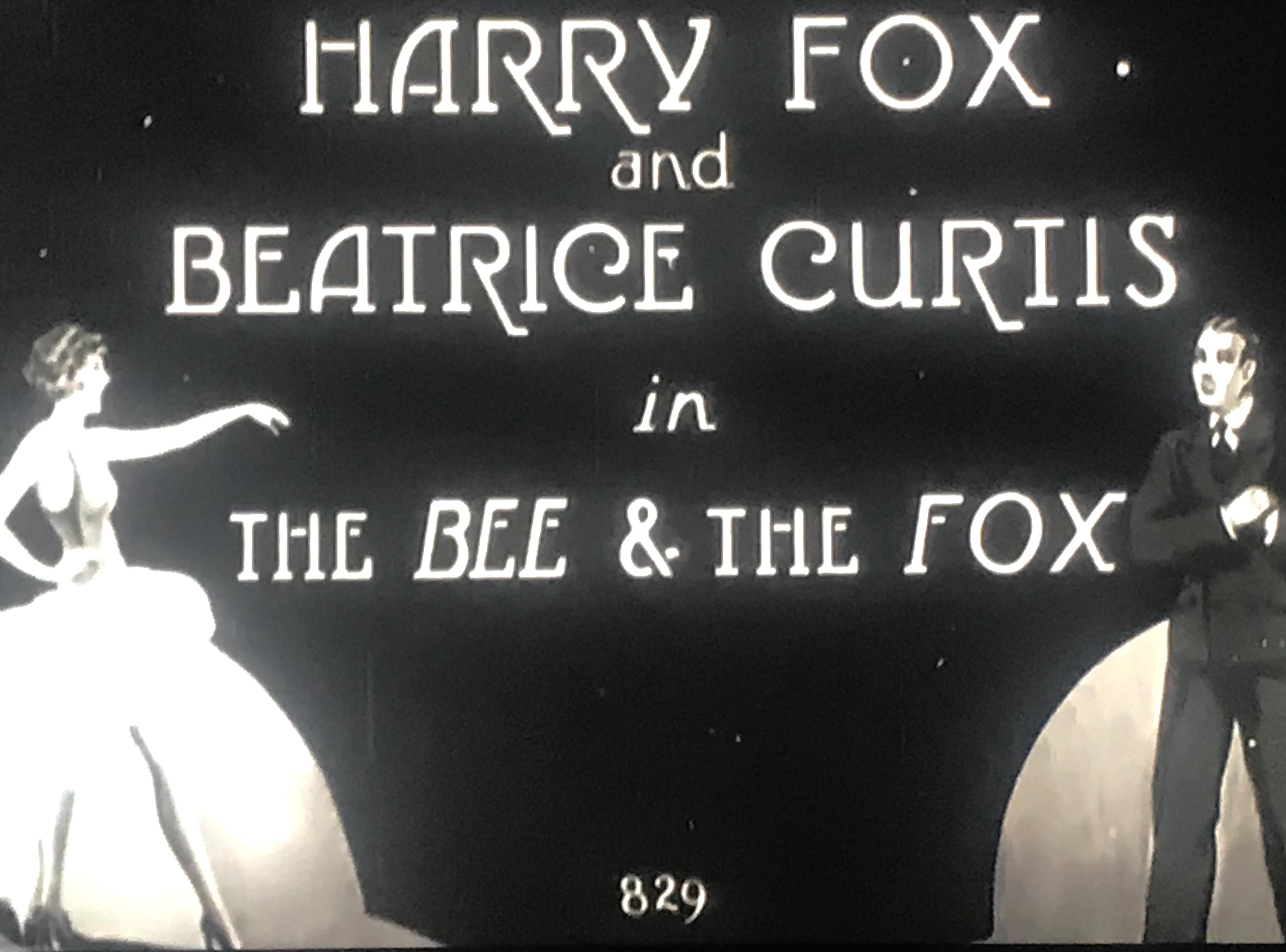 The Bee & the Fox (1929)