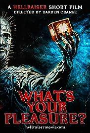 Hellraiser: What's Your Pleasure? Poster