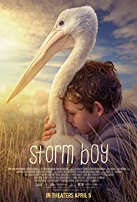 Primary photo for Storm Boy