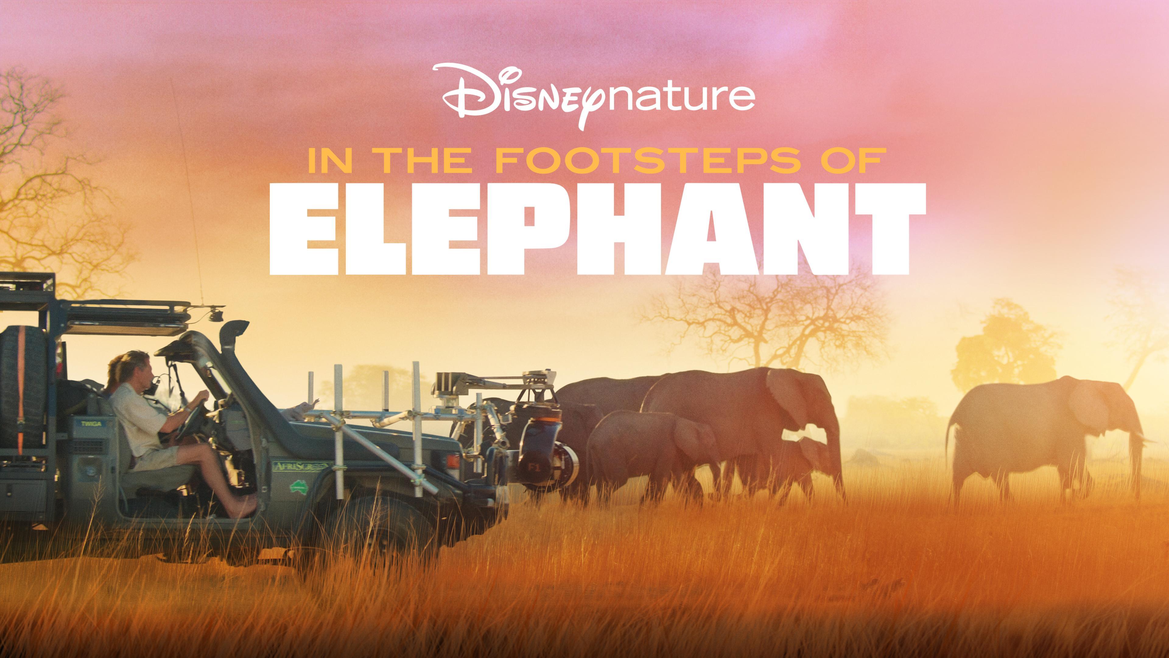 همگام با فیل ها (مستند)
