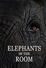 Elephants in the Room Poster