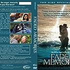 Faded Memories (2008)