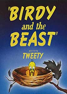 Birdy and the Beast USA