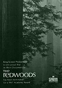 My movies 2.30 download The Redwoods by [480x800]