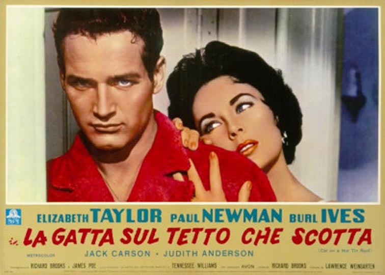 cat on a hot tin roof movie vs play
